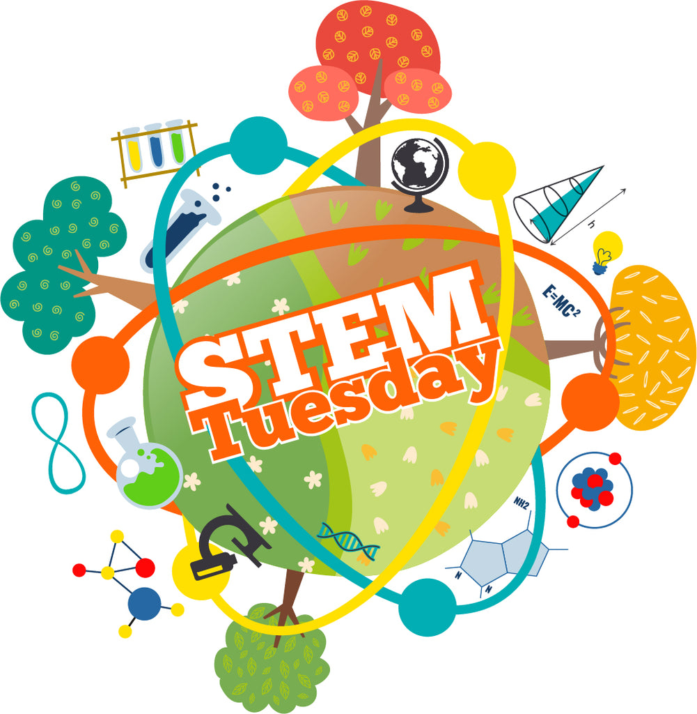 STEM Tuesday — STEM Activity Books– In the Classroom