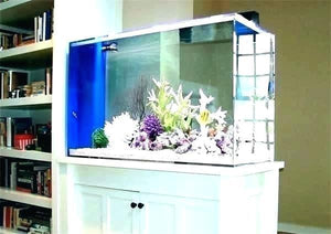 Enjoyable Modern Aquarium Stand