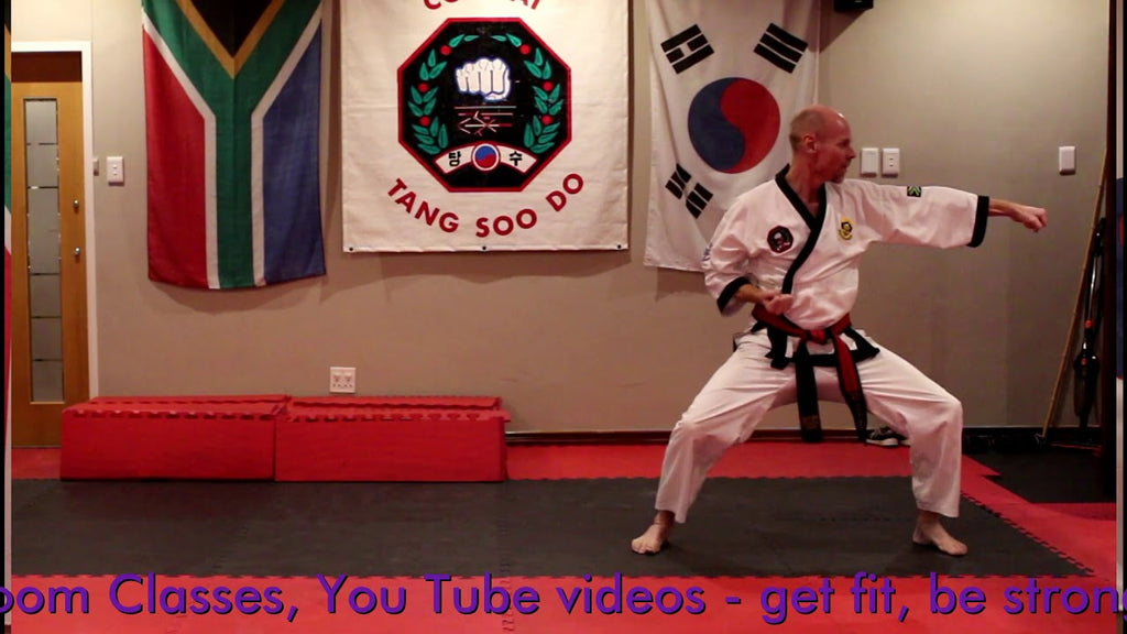 Free online classes to Purple belt in Tang Soo Do martial art  via   #lockdownworkout #blackbeltintraining #ctsd