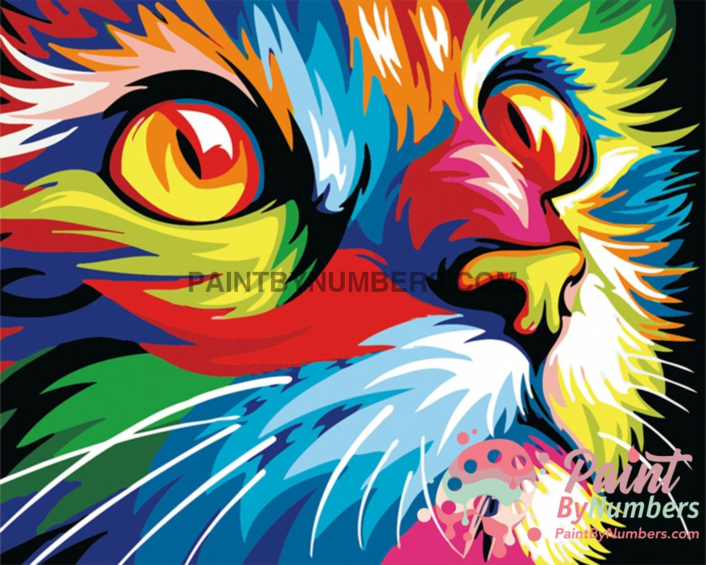 Colorful Kitty Cat By Numbers Kit For Adults