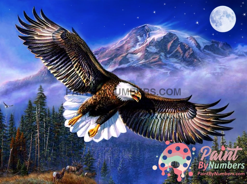 Eagle Moon Paint By Numbers Kit