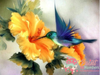 Hummingbird & Flower Paint By Numbers Kit No Frame / 40X50Cm
