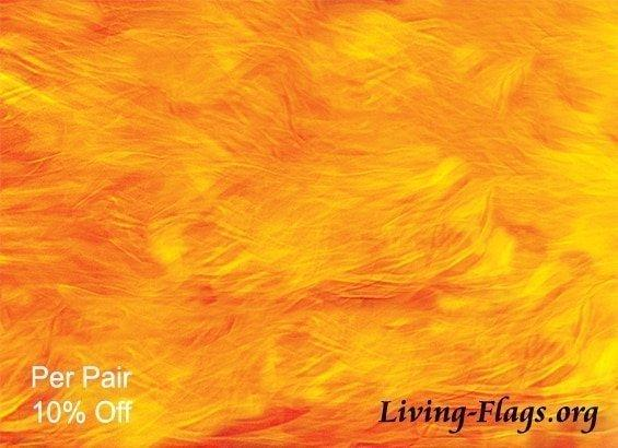 Blazing Fire - Silk Printed Worship Flags - LIVING FLAGS STORE