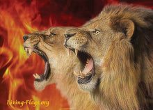 "Load image into Gallery viewer, Stand & R-O-A-R"" Lion & Lioness - Silk Printed Worship Flags - LIVING FLAGS STORE"