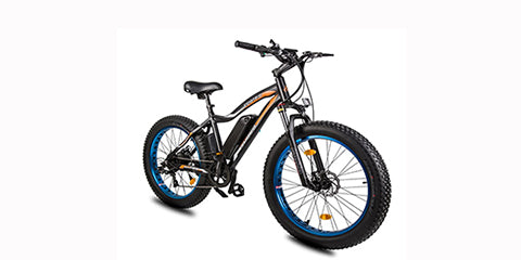 ECOTRIC ROCKET Electric Mountain Bike