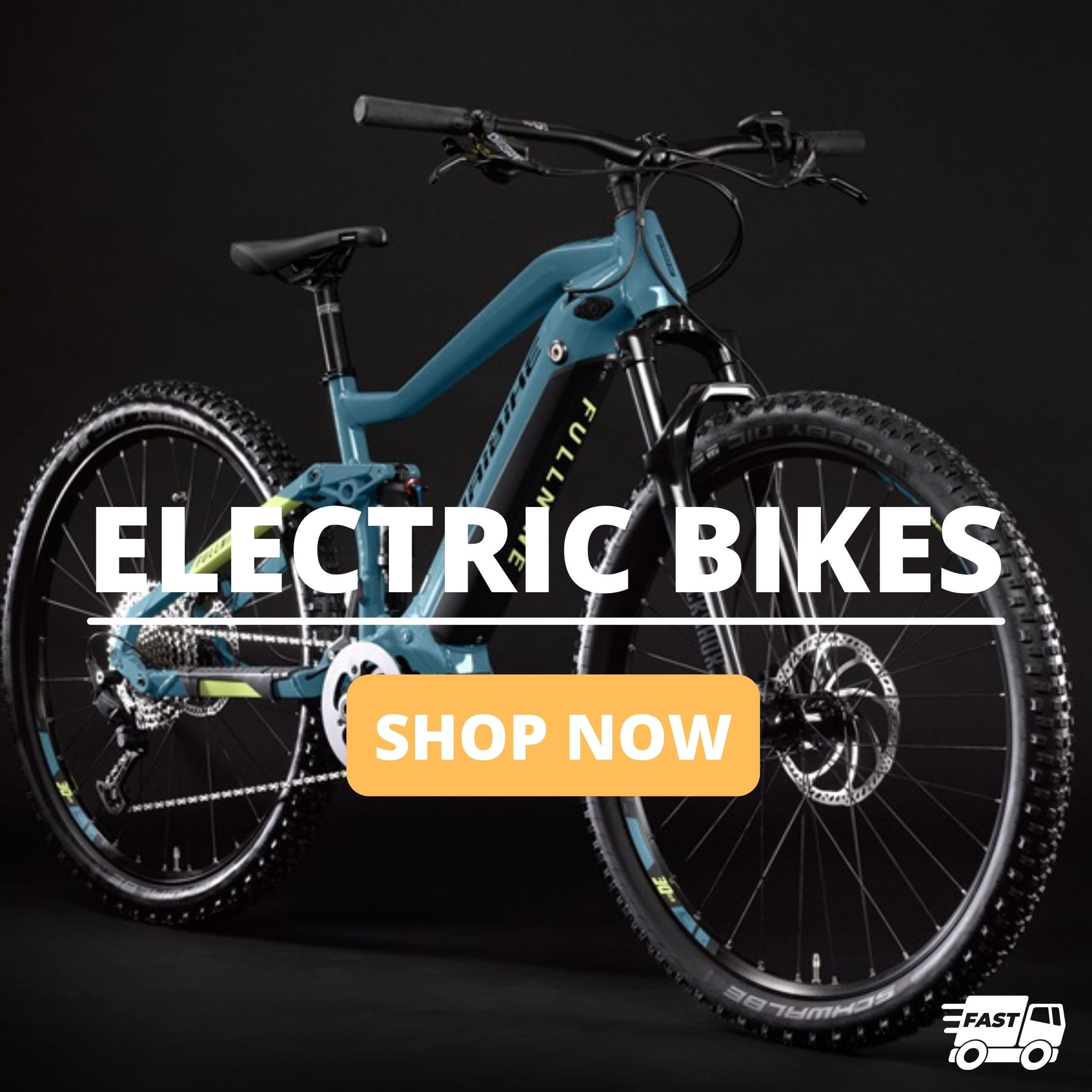 Fast Shipping Electric Bikes
