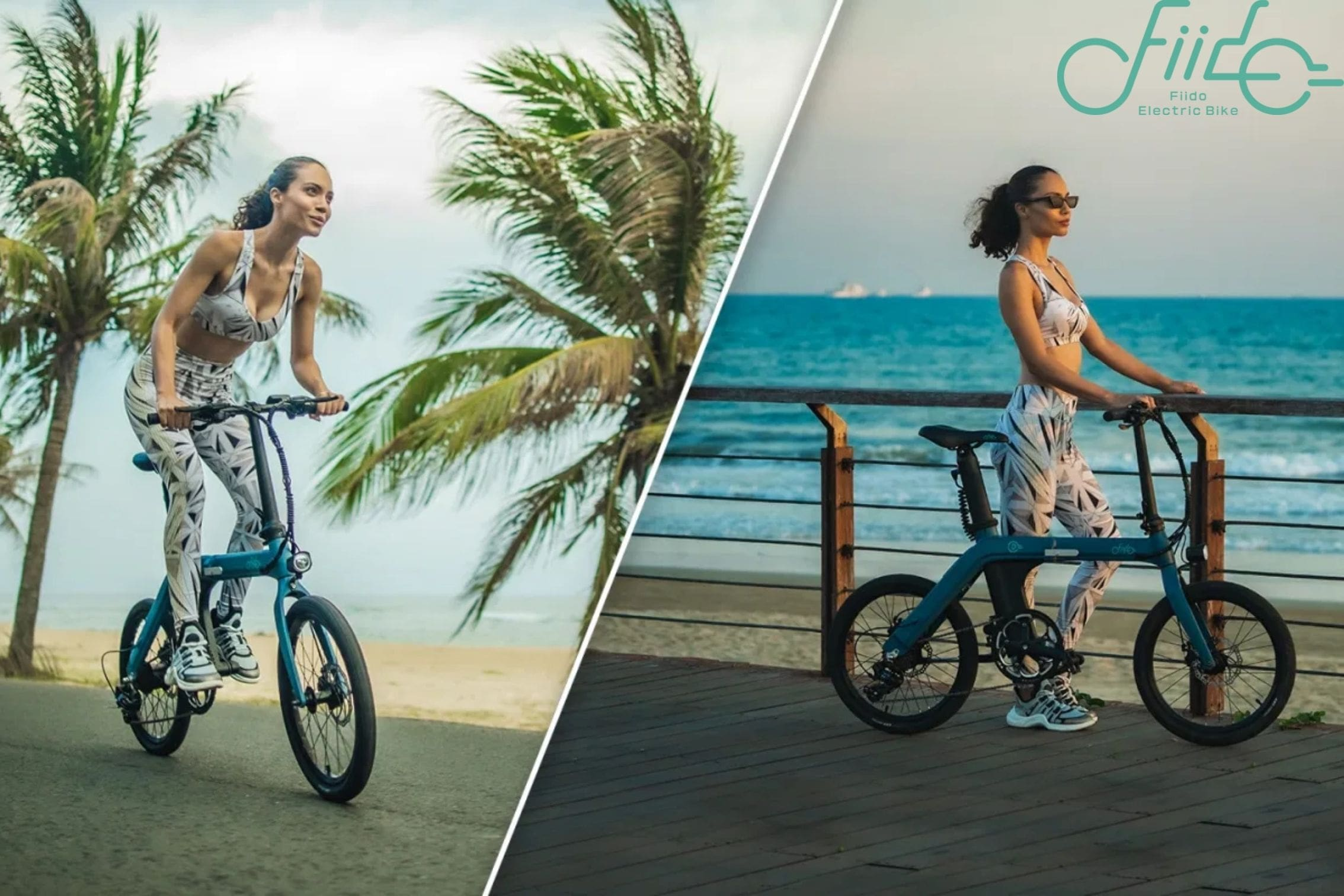 Fiido Electric Bike D11 Product Page