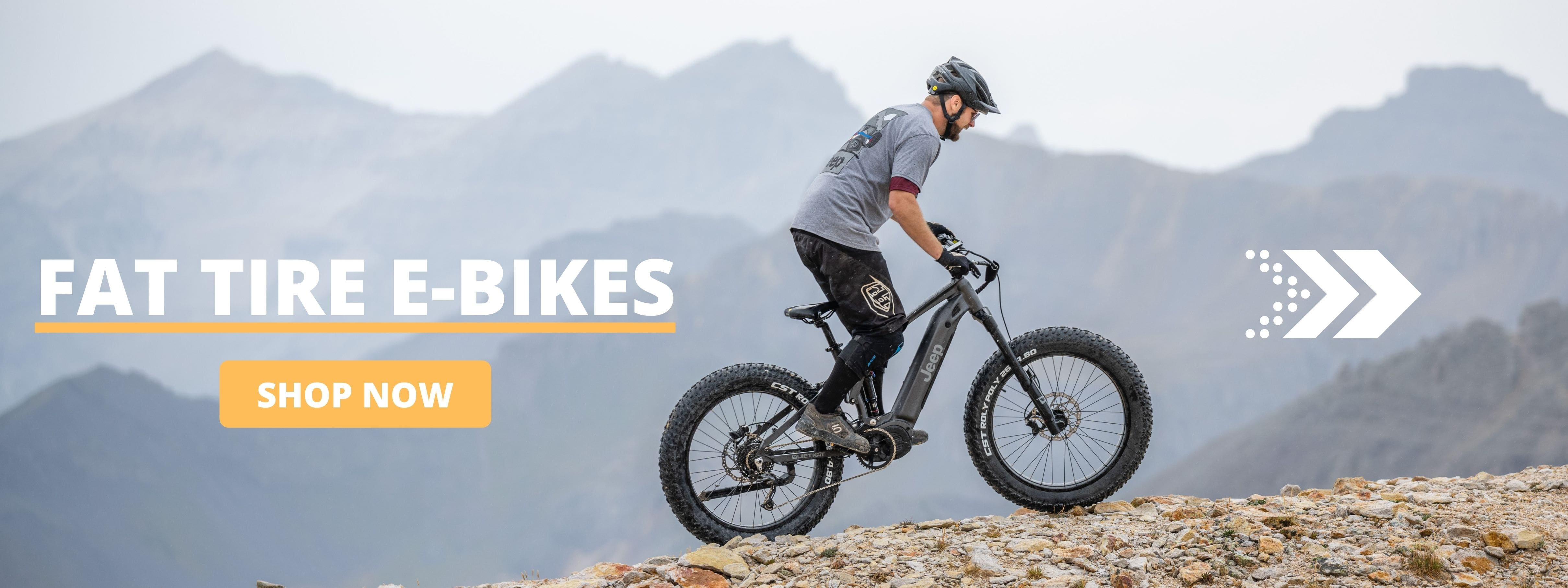 Best Fat Tire E-Bikes