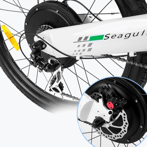 Image of ECOTRIC Seagull Electric Mountain Bike rear frame close up