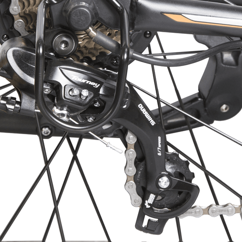 ECOTRIC Vortex Commuter Electric Bike chain close up
