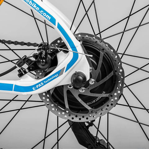Image of Eahora XC100 Electric Bike disc close up