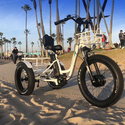 Emojo Caddy Pro Electric Bike beach picture