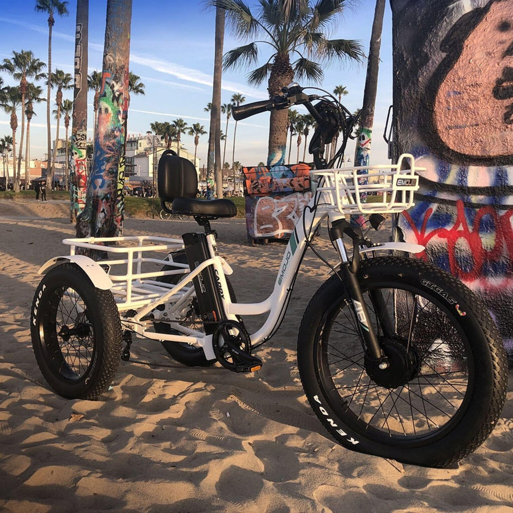 Emojo Caddy Pro Electric Bike  sand picture