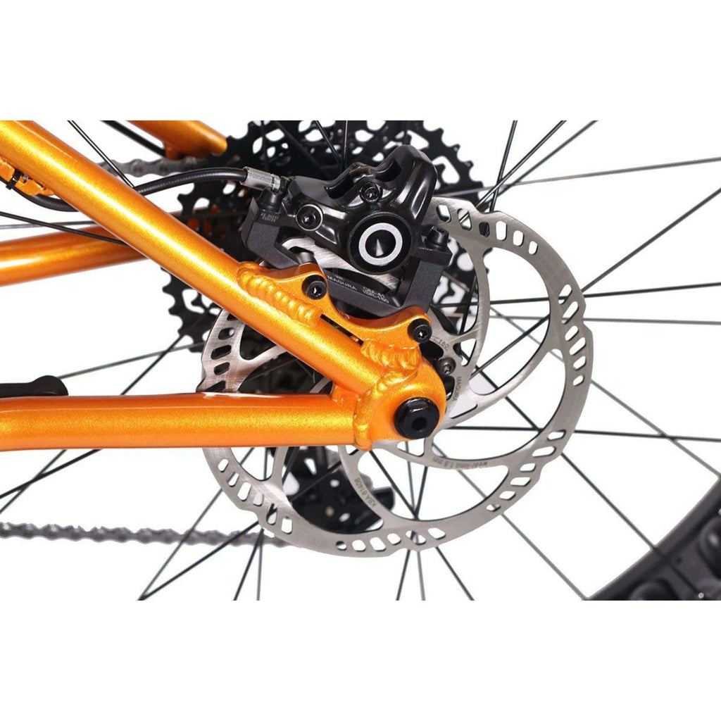 HPC Titan Electric Bike spokes close up