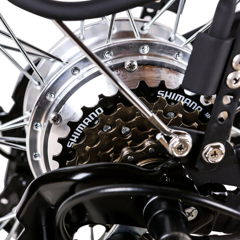 Image of NAKTO City Camel Electric Bicycle (Women) chain and gears close up