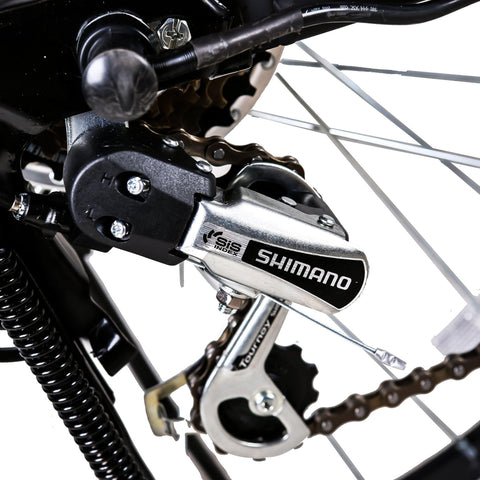 Image of NAKTO City Camel Electric Bicycle (Women) Shimano gears close up
