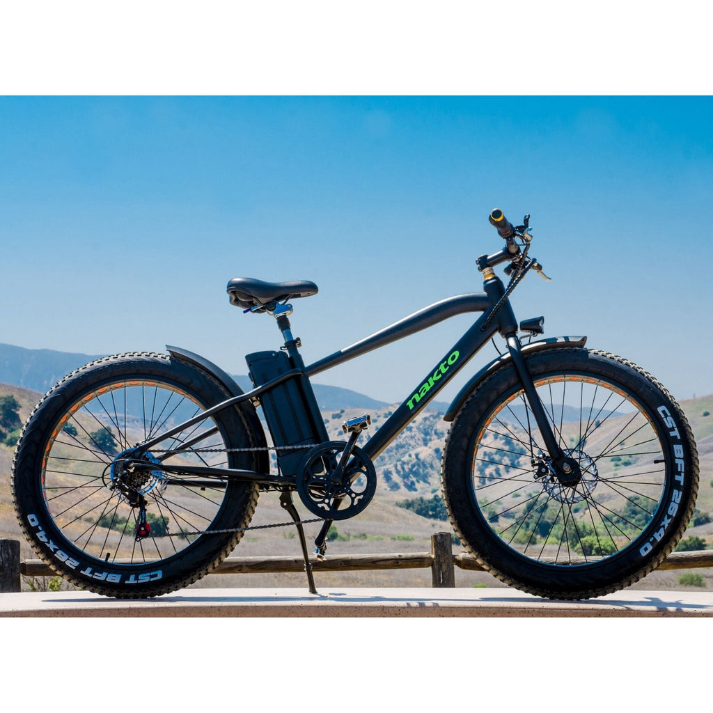 NAKTO Cruiser Fat Tire Electric Bicycle mountain view