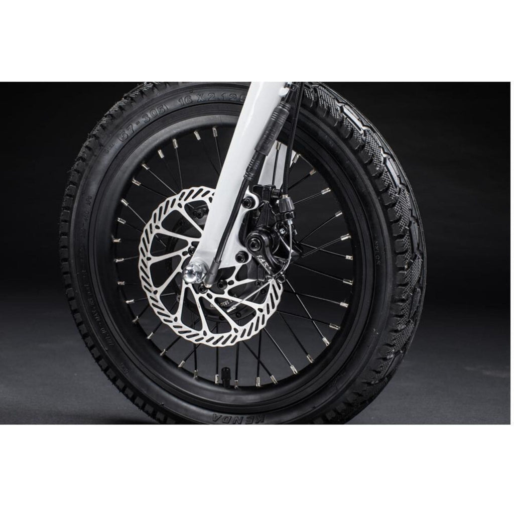 Qualisports Nemo Electric Bike Spokes View