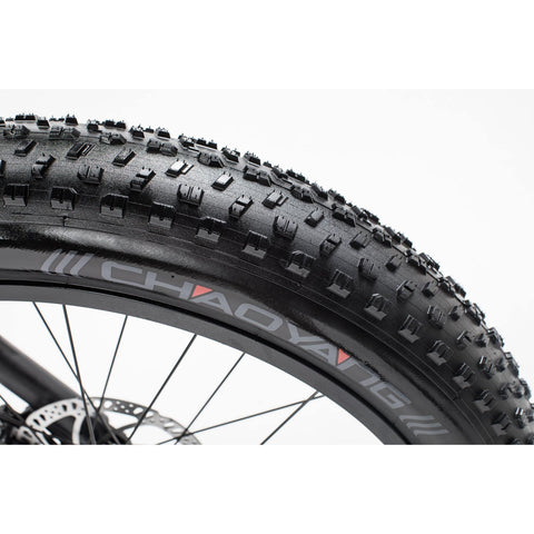 Image of Revi Bikes Cheetah Cafe Racer tires
