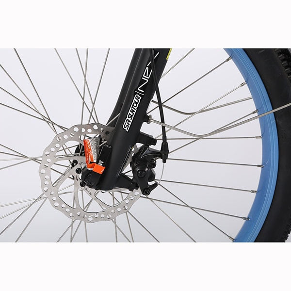 X-Treme Catalina Electric Bicycle Disk Brake