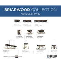 Load image into Gallery viewer, Briarwood