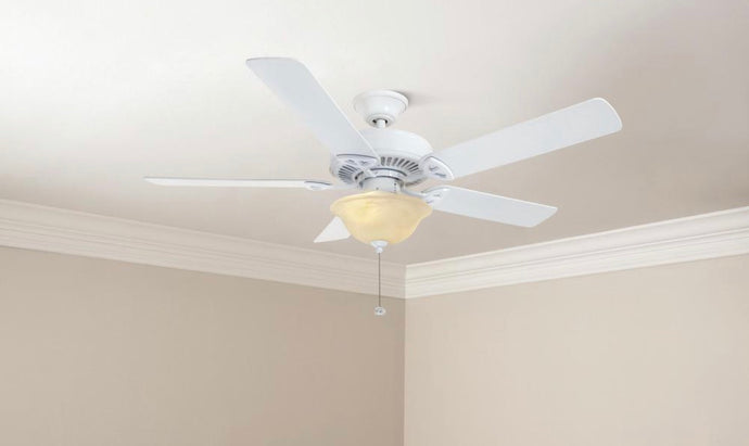 Fan light kit (Hampton bay)