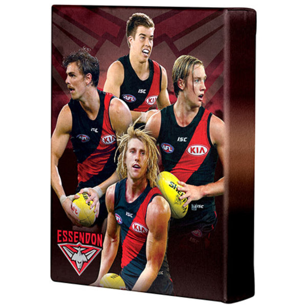 AFL PLAYER CANVAS ESSENDON BOMBERS