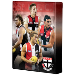 AFL PLAYER CANVAS ST KILDA SAINTS