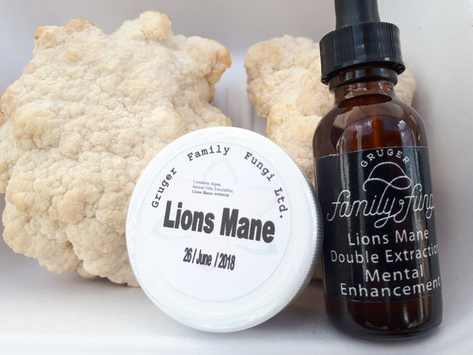 Lions Mane is an automatic headache or migraine fix