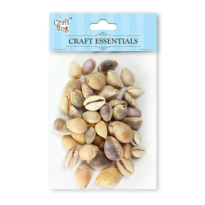 Sea Shells 100gm- Cypraea