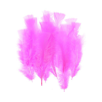 Fancy Feathers - Pink, 20pc
