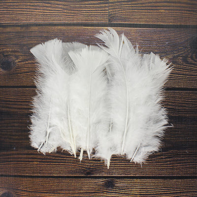 Fancy Feathers - White, 20pc