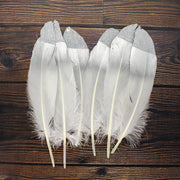 Glitter Feathers - Silver, 6pc