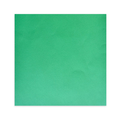 "Thick Card Stock 12"" X 12"" - Green"