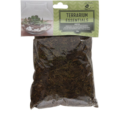 All Natural Dry Moss for Terrarium and Indoor Plants - 30gm, 1 Pack