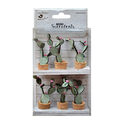 Bunny Ear Cactus- 6 Pieces