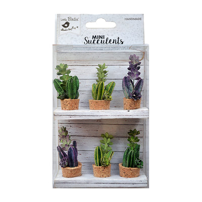 Succulent Shelf Cork Base- 6 Pieces