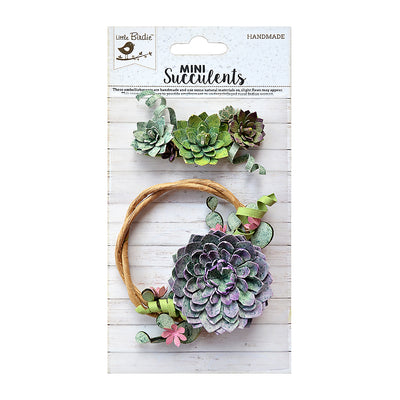 Ornamental Succulent - 2 Pieces