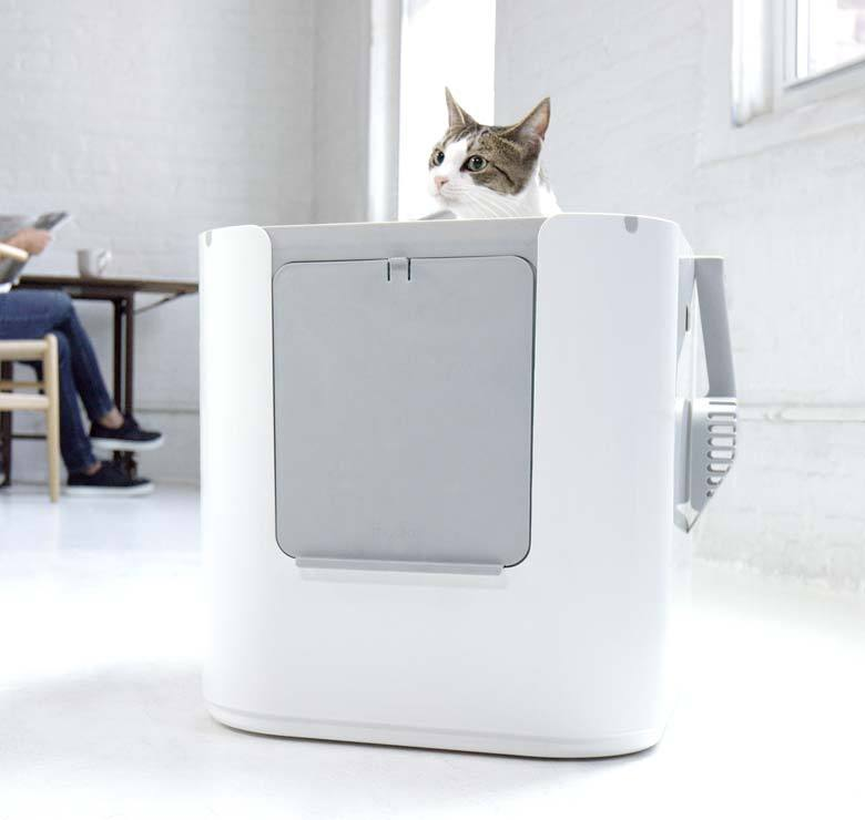 Modkat XL Litter Box in use at home.
