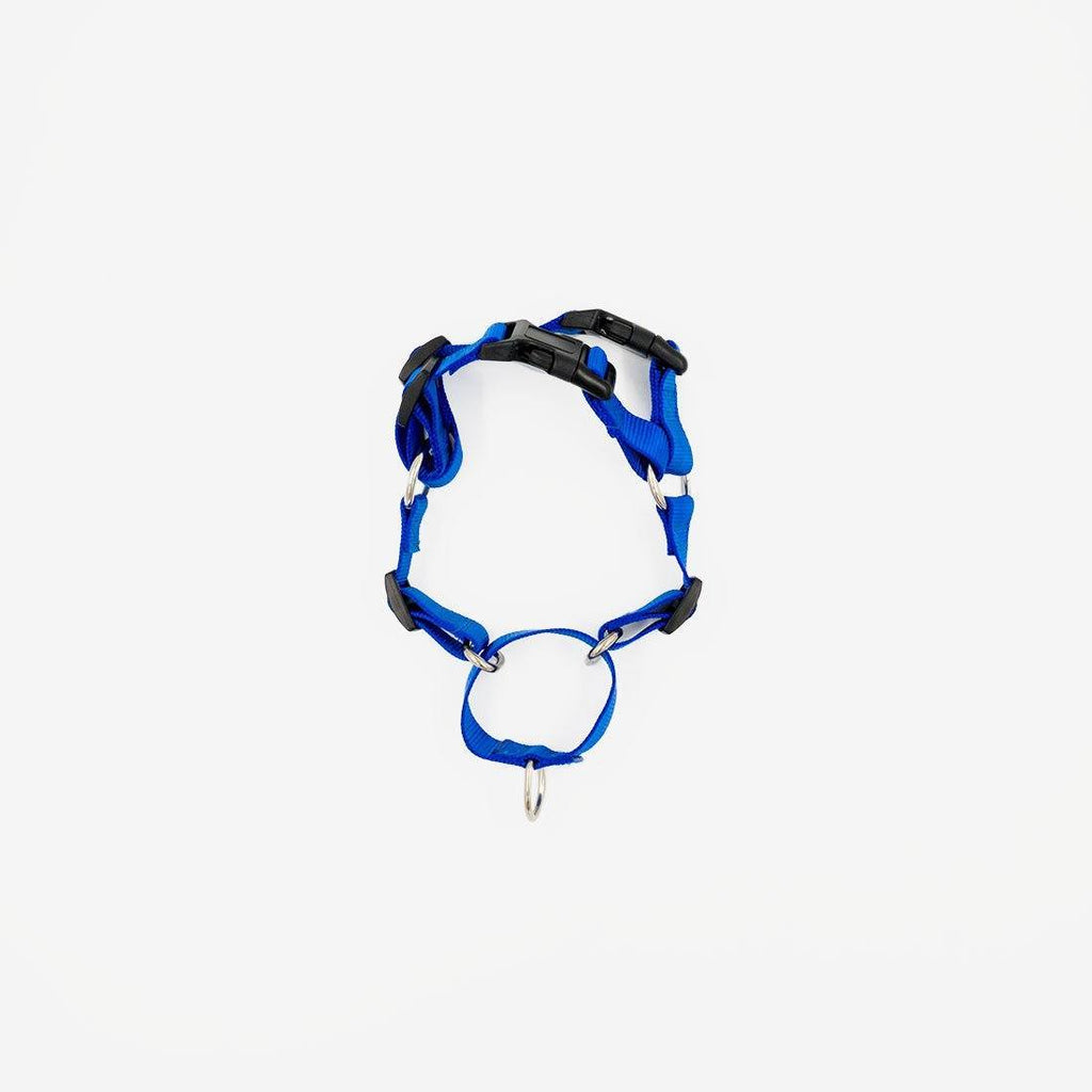 Milo Harness (No Pull)