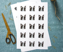 Load image into Gallery viewer, Border Collie Stickers