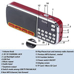 Multifunctional Digital MP3 Radio Speak L-088AM