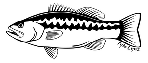 Tyte Lynz Largemouth Bass Vinyl Decal | Left Facing | Black