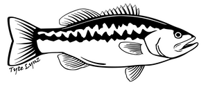 Tyte Lynz Largemouth Bass Vinyl Decal | Right Facing | Black