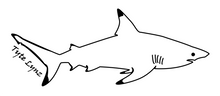 Load image into Gallery viewer, Tyte Lynz Blacktip Shark Vinyl Decal | Right Facing | Black