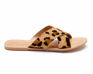 Pebble Slide ~ Leopard