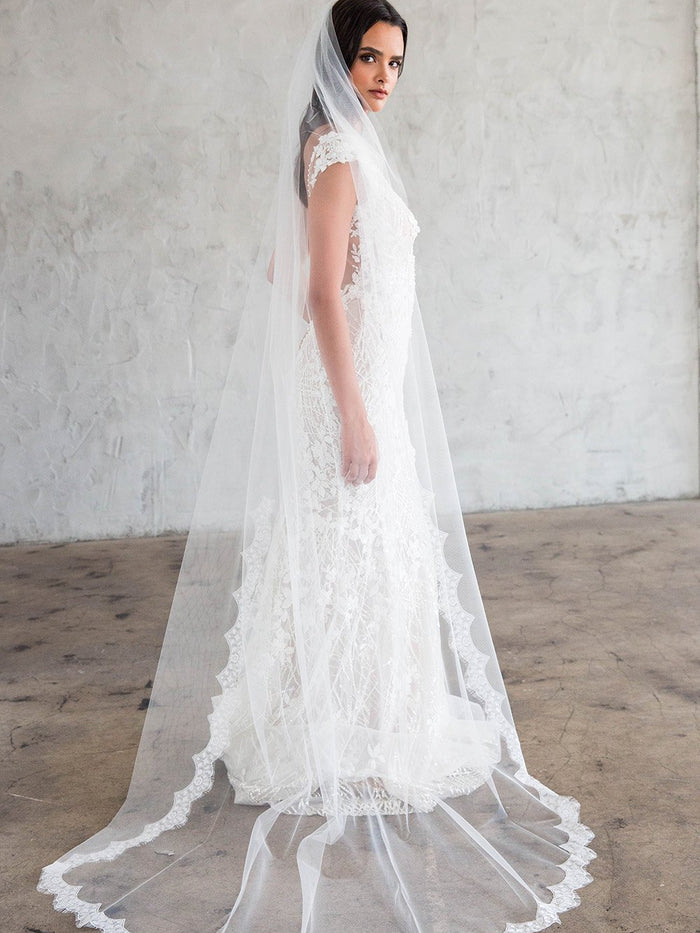 COLLETTE CHAPEL VEIL - SCALLOPED LACE 45