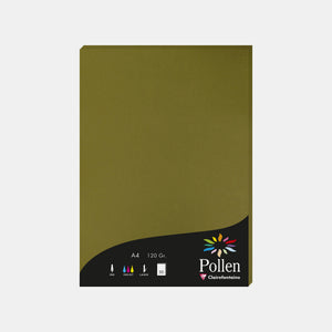 Feuille A4 velin 120g algue Pollen