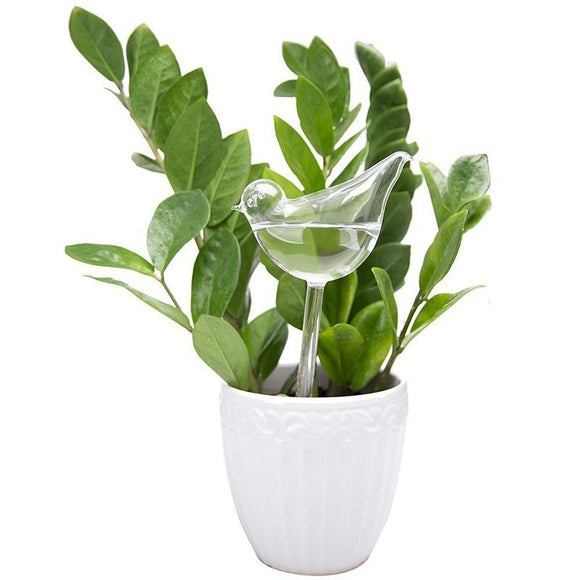 Bird Self Watering Globe | Plant | $5.68
