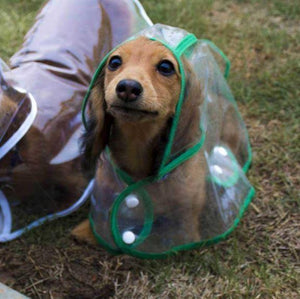 Waterproof Pet Raincoat